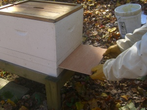 Sliding the plywood in sure beats lifting the entire hive.