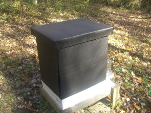 The black tar paper will help with solar heat in the cold winter.
