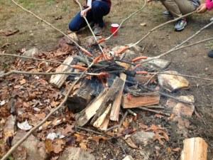 hotdogs over a fire