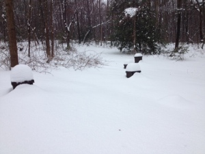 """The bee yard during the Winter Storm Pax.  Who names a winter storm """"Peace?"""""""